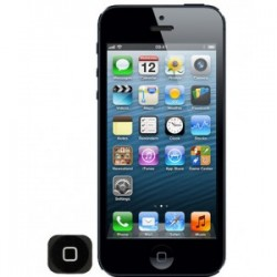 iPhone 5/5s Home Button Replacement Repair